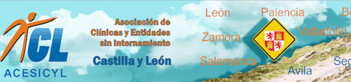 ANCSSI CASTILLA Y LEON (ACESICYL)